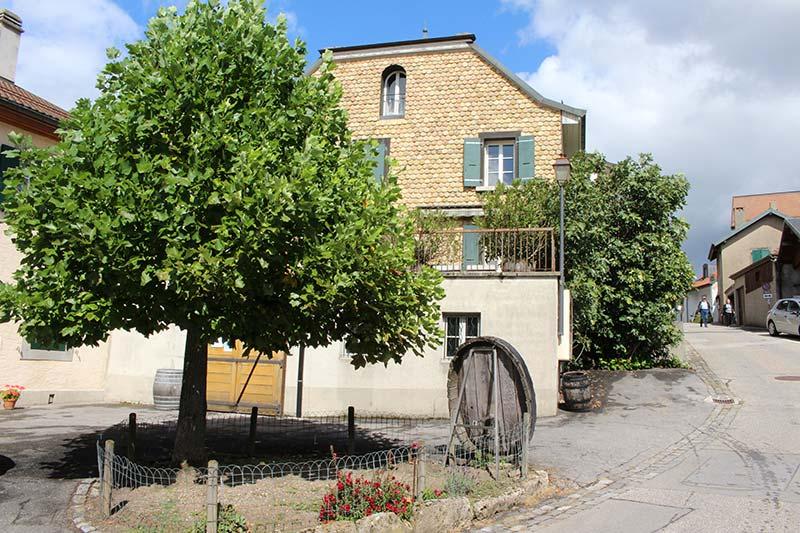 Cave du Vieux Coteau Producteurs de vin